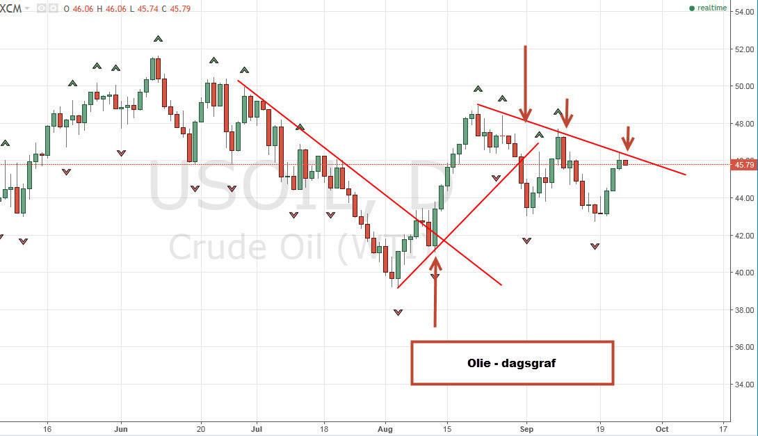 Kurser i oliehandel