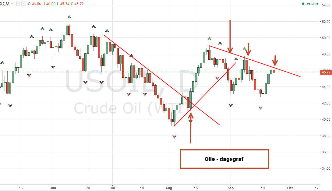 Olie-dagsgraf